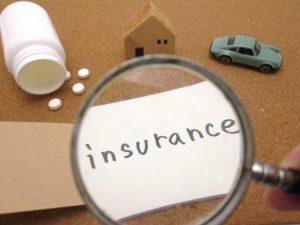 9b34f583f5428f4b7d31b78e4fb0bc02 s 300x225 - ペット保険の内容を比較するときにチェックすべきポイント5つ