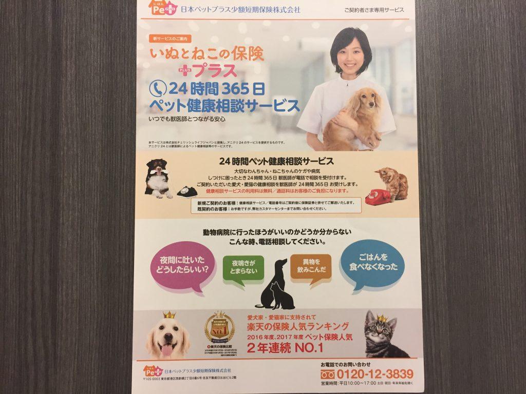 IMG 2264 1024x768 - 日本ペットプラス「いぬとねこの保険」口コミとメリット・デメリットが大幅改善で評価もうなぎのぼり!