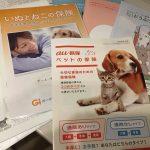 IMG 6008 150x150 - 【全15社を網羅】犬のペット保険はどこがいい?安さと補償内容で差がつく選び方まとめ。