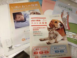 IMG 6008 300x225 - 【全15社を網羅】犬のペット保険はどこがいい?安さと補償内容で差がつく選び方まとめ。