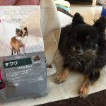 IMG 64921 150x150 - うちの犬(チワワ)がフードジプシーの旅へ|約7年慣れ親しんだユーカヌバを卒業します。