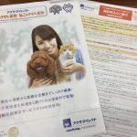 アクサダイレクトのペット保険の口コミ・評判|24時間獣医師相談がウリ!一方、更新拒否などの悪評もある。