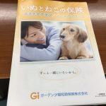 IMG 68901 150x150 - 日本ペットプラス(旧ガーデン)「いぬとねこの保険」口コミ・評判が良い割に内容はイマイチ?終身でない点もデメリット。