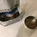 アボダームでアボカド中毒の危険性は?実際にチワワが食べてみてどうなった?