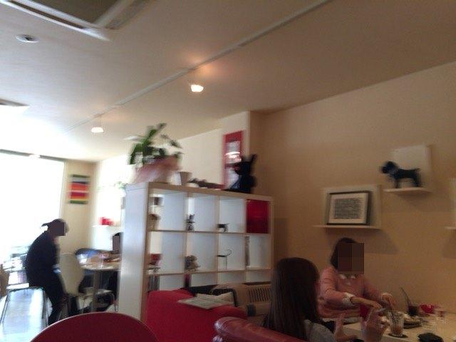 IMG 1083 - チワワ君と須磨・板宿のドッグカフェ【リラックス】に行ってきました!