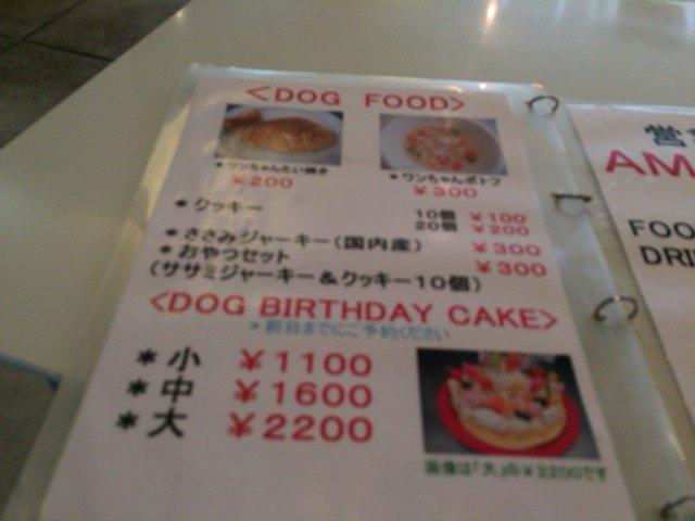 IMG 1091 - チワワ君と須磨・板宿のドッグカフェ【リラックス】に行ってきました!