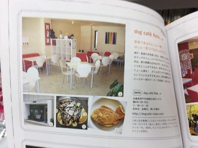 IMG 1604 - チワワ君と須磨・板宿のドッグカフェ【リラックス】に行ってきました!