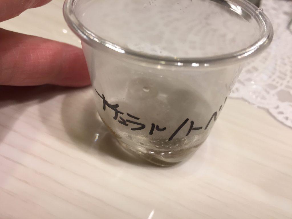 IMG 1647 1024x768 - 【リアル口コミ・評判】ナチュラルハーベストをチワワ君に食べてもらった!