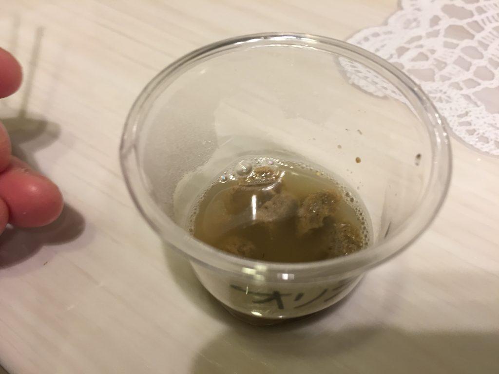 IMG 1655 1024x768 - 【リアル口コミ・評判】オリジンをチワワ君に食べせてみた!
