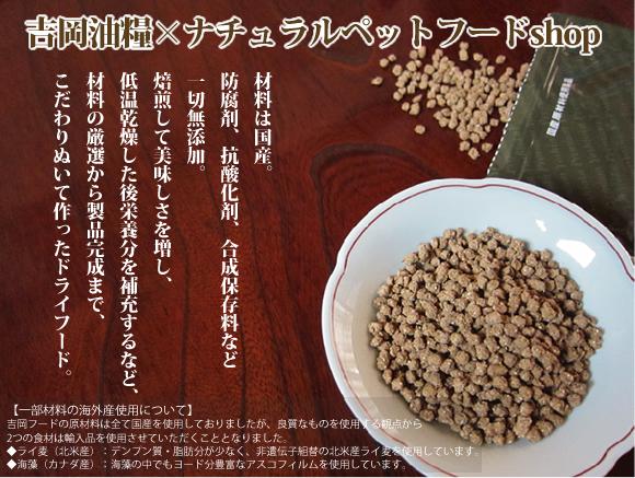 y cat01 - 怪しいと噂の吉岡油糧の無料お試しセットを注文してみたよ!非公表の原材料や成分も公開!