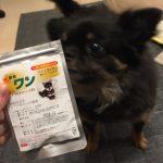 犬康食ワンプレミアムをチワワ君が試してみた!副作用や添加物は大丈夫?