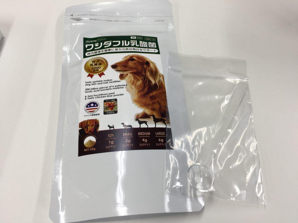IMG 2345 1024x768 - 犬用サプリのワンダフル乳酸菌のリアル口コミ!味や匂い実際に食べさせたらどうだった?