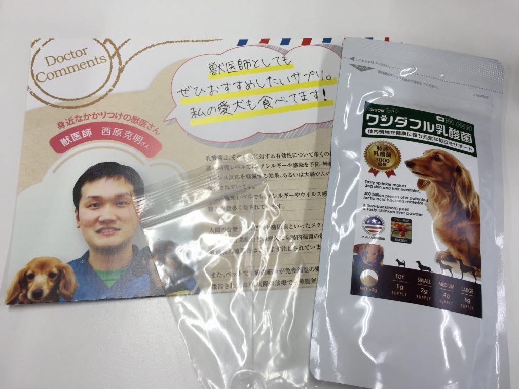 IMG 2346 1 1024x768 - 犬用サプリのワンダフル乳酸菌のリアル口コミ!味や匂い実際に食べさせたらどうだった?