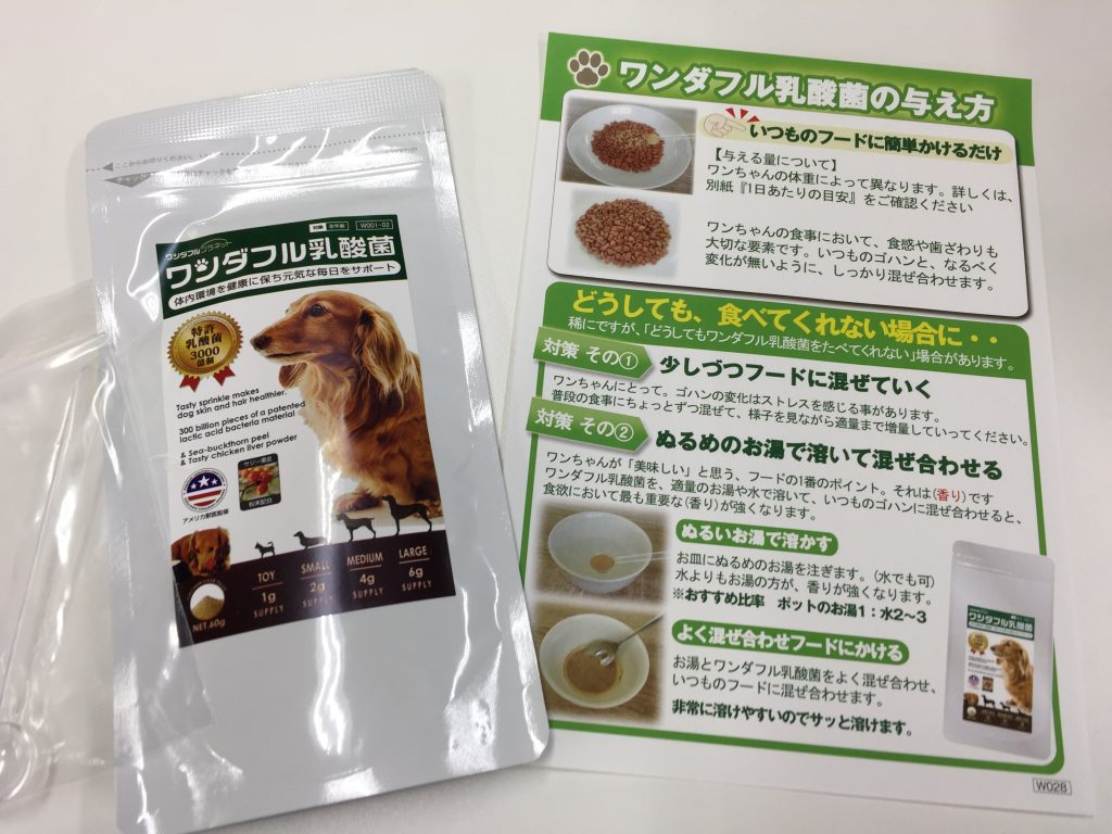IMG 2348 1024x768 - 犬用サプリのワンダフル乳酸菌のリアル口コミ!味や匂い実際に食べさせたらどうだった?