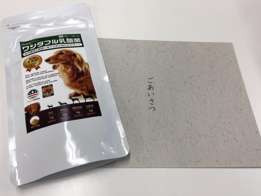 IMG 2349 1024x768 - 犬用サプリのワンダフル乳酸菌のリアル口コミ!味や匂い実際に食べさせたらどうだった?