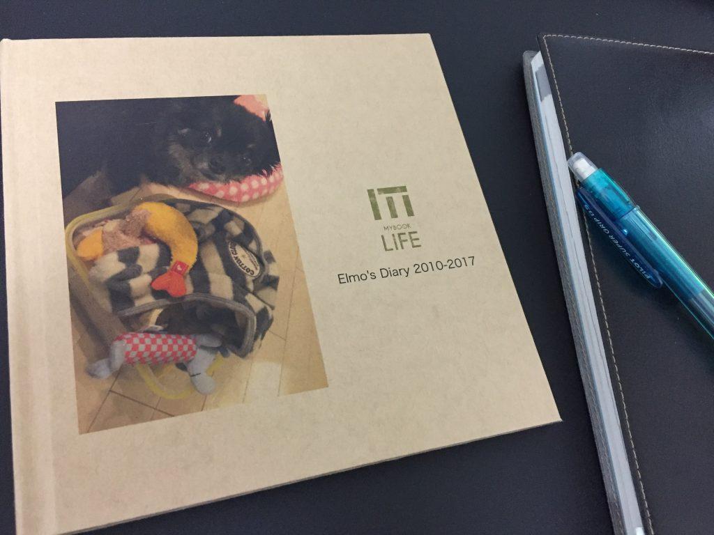 IMG 3144 1024x768 - チワワ君との7年間の思い出をアルバムにしてみた!スマホの愛犬との写真をフォトブックで永遠に。