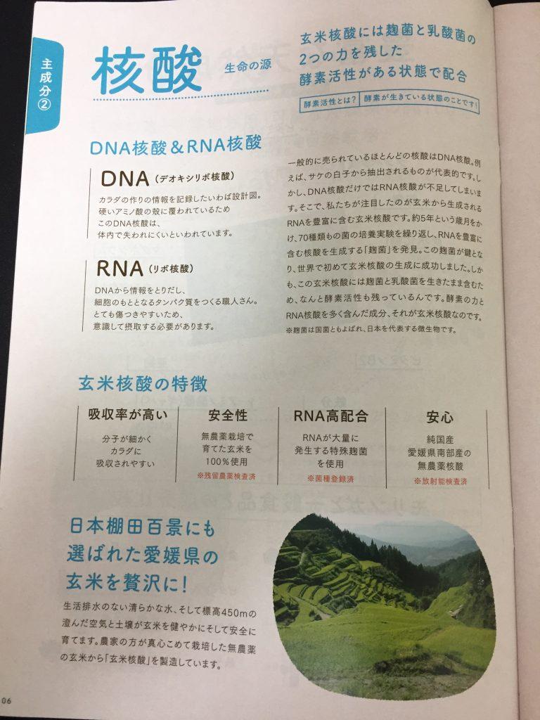 IMG 43491 e1496740076885 768x1024 - 【あいこな】モリンガ、玄米核酸入りのペットサプリのリアル口コミ・評価!実際にチワワ君に試してみました。