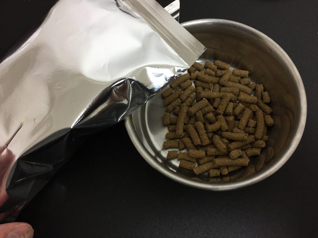 IMG 2574 1024x768 - ドッグフード【犬心】のリアル口コミ・評価|療法食のポテンシャルなど実際に購入して確かめました。