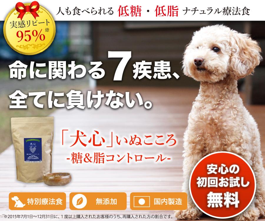 top image front - ドッグフード【犬心】のリアル口コミ・評価|療法食のポテンシャルなど実際に購入して確かめました。