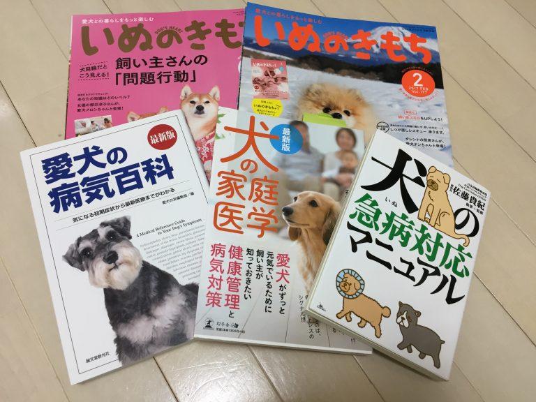 IMG 35501 768x576 - 犬の核硬化症と加齢性白内障って何が違うの!?犬の白内障は加齢性でも怖い!!