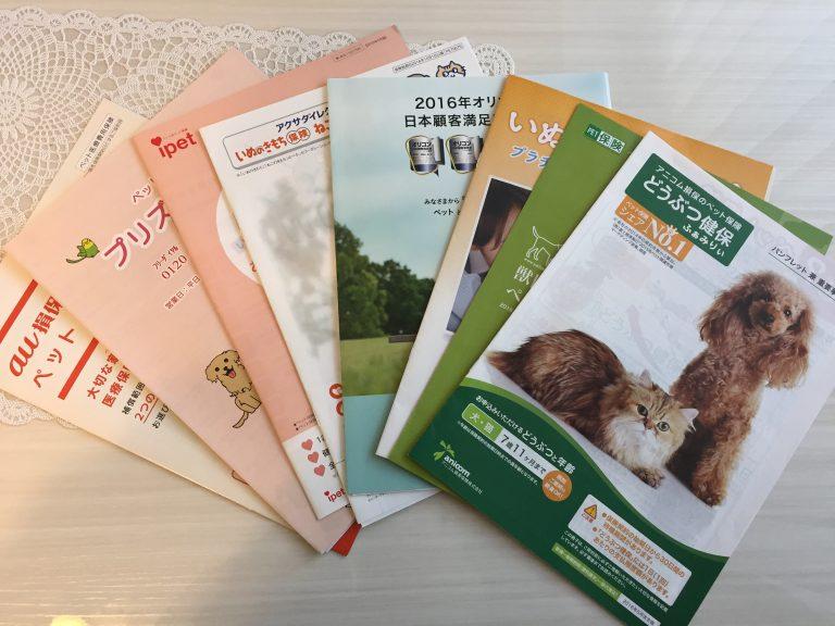 IMG 6479 768x576 - 猫のペット保険はどこがいい?各社の比較や口コミからおすすめの保険選びのお手伝い。