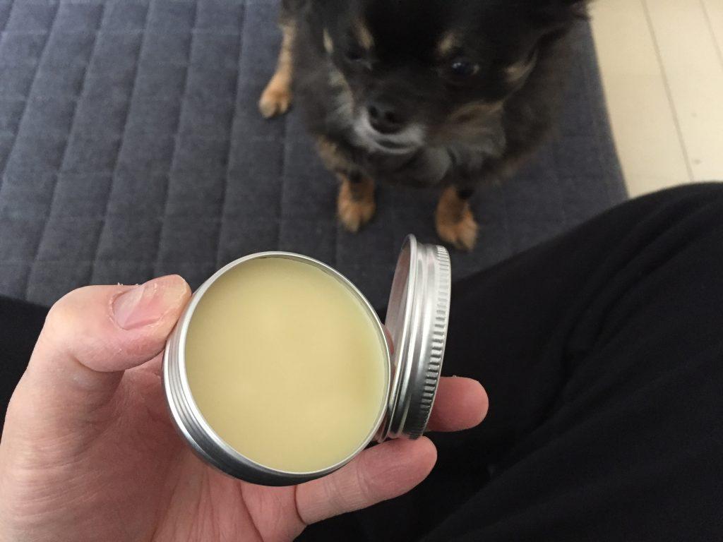 IMG 1306 1024x768 - 犬の皮膚の炎症でよく使われる人間の市販薬!これって本当に大丈夫?