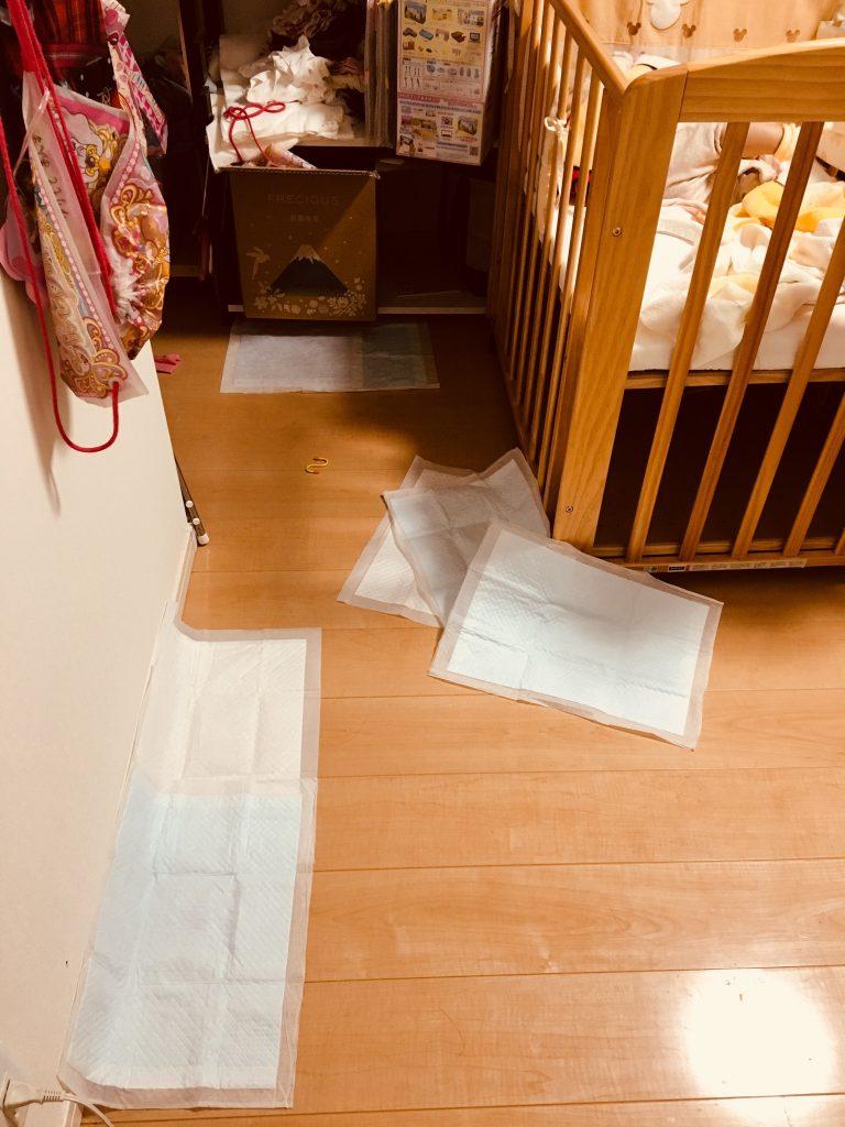 C63858E0 49FD 4A87 9A3F 7CAC512E3E4B 768x1024 - 【室内犬のトイトレ(しつけ)失敗談】ケージ外でトイレするようになった経緯としつけ直しへ。